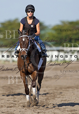 Palm Meadows Training Center 1-30-12