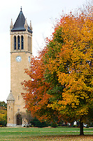 Waves of Fall colors envelop central campus of Iowa State University in Ames, Iowa. (Christopher Gannon/Gannon Visuals)