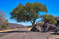 Another capture of the Fort Davis rest stop on the way back from Davis Mountain State Park where these giant boulders tumble down the mountain side and came to rest next to this wonderful old tree. Some biker stop to take a break and have some lunch at this unique rest stop in the Davis mountains.