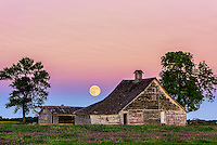 Full moon over abandoned farmstead with clover flowers in foreground.
