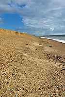 Evidence of severe erosion of the spit at Hurst, Milford-on-Sea caused by an autumn storm