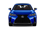 Car photography straight front view of a 2019 Lexus UX F-Sport-4wd 5 Door SUV Front View