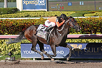 HALLANDALE BEACH, FL - JULY 01:  #2 Imperial Hint (FL)  wth jockey Javier Castellano on board, wins the Smile Sprint Handicap G3 Stakes at Gulfstream Park on July 01, 2017 in Hallandale Beach, Florida. (Photo by Liz Lamont/Eclipse Sportswire/Getty Images)
