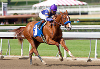 February 12, 2012. Princess Arabella and Martin Garcia win an allowance race at Santa Anita Park in Arcadia, CA.