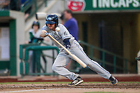 West Michigan Whitecaps first baseman Will Maddox (11) lays down a bunt against the Fort Wayne TinCaps on May 23, 2016 at Parkview Field in Fort Wayne, Indiana. The TinCaps defeated the Whitecaps 3-0. (Andrew Woolley/Four Seam Images)