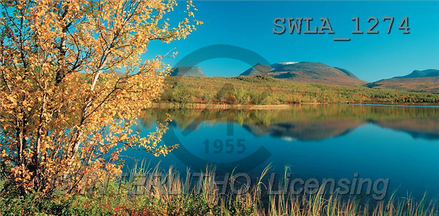 Carl, LANDSCAPES, panoramic, photos(SWLA1274,#L#)