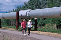 USA, Alaska, Alaska-Pipeline bei Fairbanks