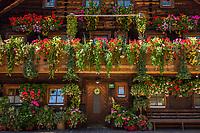 Austria, Salzburger Land, Pinzgau, Dienten: flower decorated farmhouse at village centre | Oesterreich, Salzburger Land, Dienten: altes Bauernhaus im Dorfzentrum mit ueppigem Blumenschmuck