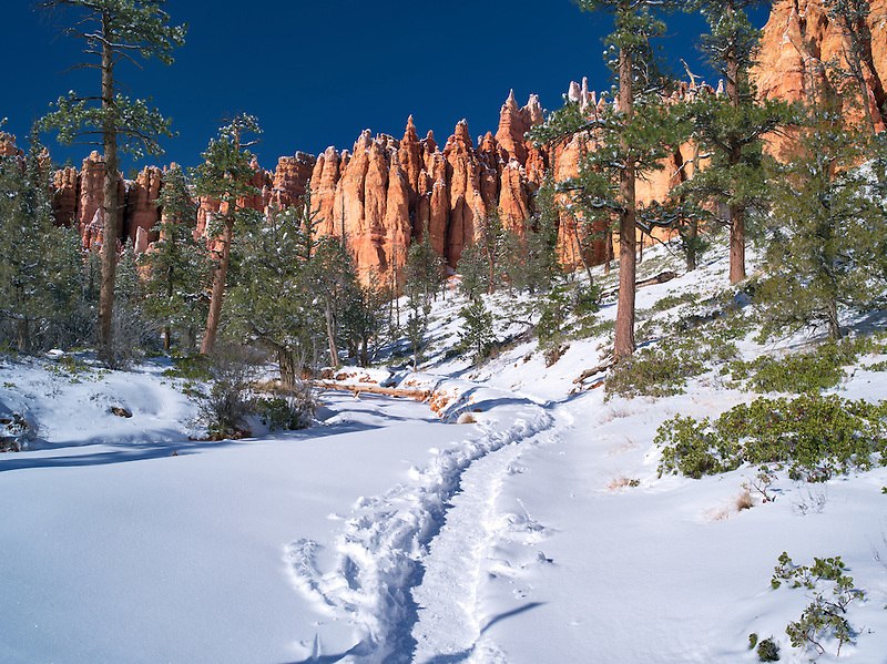 Path with Snow in Bryce Canyon National Park, Utah