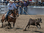 Tie Down Roper Ryles Smith fro Oakdale, California  scores 11.6 seconds at the 68th annual Oakdale Saddle Club Rodeo on Sunday, April 14, 2019.  (Al Golub/Record Photo)