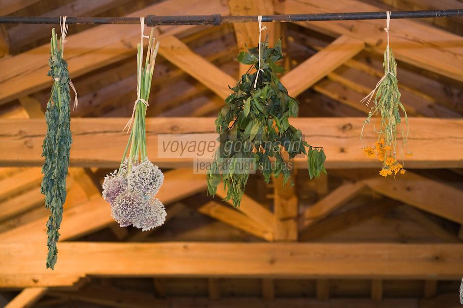 Europe/France/Aquitaine/40/Landes/ Lencouacq:  Détail décoration florale de la Ferme Auberge du Jardin de Violette   de Violette Valés - agricultrice et restauratrice