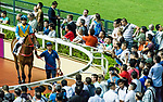 Spectators watch the horses in the parade ring before Cheung Hong Handicap during Hong Kong Racing at Happy Valley Racecourse on September 12, 2018 in Hong Kong, Hong Kong. Photo by Yu Chun Christopher Wong / Power Sport Images