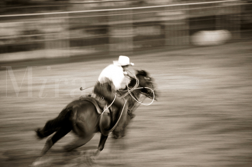 Blurred action overhead image of a cowboy on a horse in a roping event at a rodeo. Texas.
