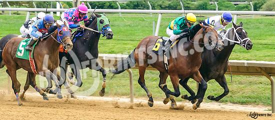 Arbitrator winning at Delaware Park on 9/26/16