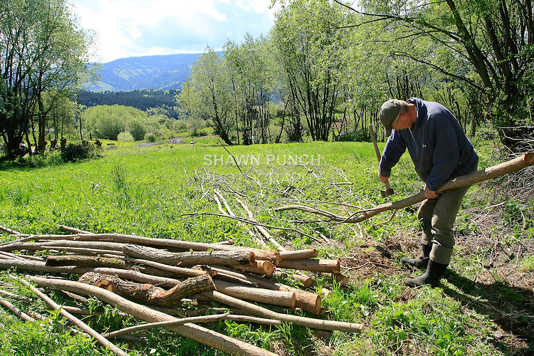 This man chopped a lot of wood. He was very funny, friendly and polite. The mountains and valleys in the background were breath taking.