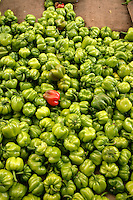 Green peppers for sale in a market in Istanbul, Turkey