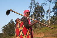 Agriculture/Kibeho