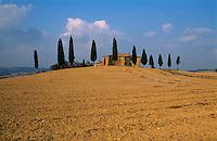 Italien, Toskana, bei Montalcino