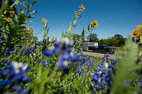 A trailer heads past blooming wild flowers down Highway 281 in Hill Country, Texas, on April 26, 2010. The historic highway offers many attractions including Fossil Rim Nature Park, many spring time flowers, and a wonderful view of hill country in central Texas...PHOTOS/ MATT NAGER
