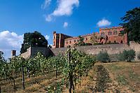Italien, Toskana, Brolio in Chianti, Castello und Weinberge