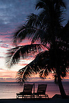 Taveuni, Fiji; a pair of lounge chairs overlooking the water, sitting under a palm tree, silhouette against a sunset sky