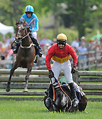 05/17/2014 - Radnor Hunt Races