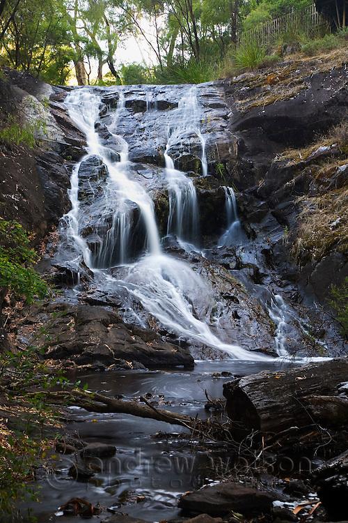 Beedelup Falls in Beedeulp National Park.  Pemberton, Western Australia, AUSTRALIA.