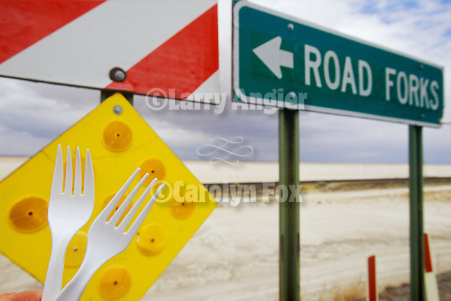 Road Forks, a place along I-10 in New Mexico. When you find a fork in the road, take it!