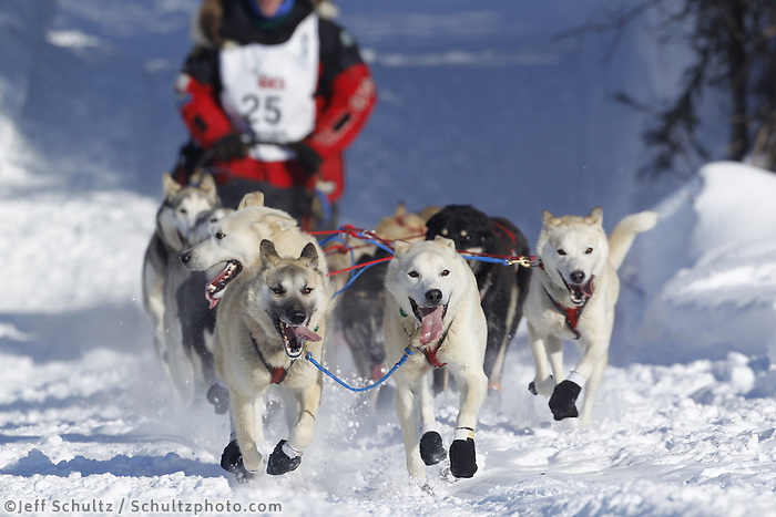 Sunday, March 4, 2012  Paul Gebhardt's team drops onto Long Lake at the restart of Iditarod 2012 in Willow, Alaska.