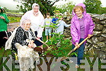 Sheila Clifford, Eileen Cronin and Anna O'Neill, pictured as they planted a tree as part of the Cronin reunion held at Cronins Yard, Beaufort recently.....................................................Christy O'Mahony, captain Beaufort Golf club and Irene McCarthy, Lady Captain Beaufort Golf Club pictured with James Lucey and Sheila McCarthy, who were the winners in their Captain Prize Competition at the course on Sunday. Also pictured are Frank Coffey, President, Sean Coffey, vice captain, Teresa Clifford, Margaret Guerin, Josephine O'Shea, Gretta Hurley, Renee Clifford, Peggy O'Riordan, Maureen Rooney, Mary Barrett, Robin Suter, Gearoid Keating, Jim Hurley, Gabhan O'Loughlin, Rory Browne, Mike Quirke, Matt Templeman and Simon Rainsford...Picture: Ger Cronin LMPA (087) 0522010....PR SHOT..NO REPRODUCTION FEE.............................................................................................................................................................................................................................................