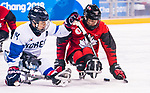 PyeongChang 15/3/2018 - Liam Hickey (#23), of St. John's, NL,   in action as Canada takes on Korea in semifinal hockey action at the Gangneung Hockey Centre during the 2018 Winter Paralympic Games in Pyeongchang, Korea. Photo: Dave Holland/Canadian Paralympic Committee