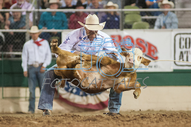 Stran Smith from Childress, Texas prepares to tie a calf during the Tie-Down event during the final night of Reno Rodeo on Saturday, June 28, 2014.<br /> (Photo By Kevin Clifford)