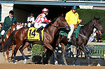 October 06, 2018 : #14 Standard Deviation and javier Castellano in the 105th running of The Claiborne Breeders' Futurity (Grade 1) $500,000 at Keeneland Race Course on October 06, 2018 in Lexington, KY.  Candice Chavez/ESW/CSM