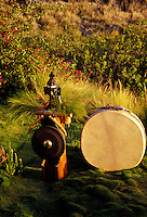 Native american drum and asian gong in outdoor garden setting