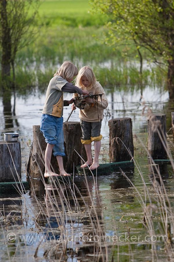 Zwei Jungen, Kinder keschern im Frühjahr barfuß in einem Tümpel, Teich, Kescher