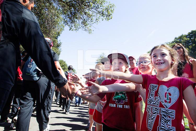 STANFORD, CA - SEPTEMBER 13,  2014--Stanford Football vs Army at Stanford Stadium