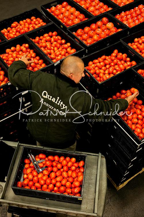 DG  CR Report - Food Lion Shoots. Photos by Patrick Schneider Photo.com