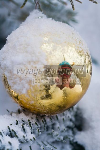 Europe/France/73/Savoie/Val d'Isère: Détail décoration des sapins du front de neige