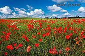 Marek, LANDSCAPES, LANDSCHAFTEN, PAISAJES, photos+++++,PLMP01087W,#L#, EVERYDAY