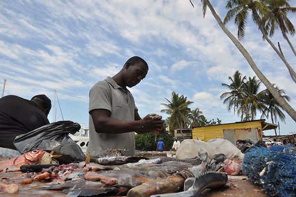 Pescadores y Vendedores de Pescados en Andres Chica, al lado del Club Naútico.Ciudad: Santo Domingo.Fotos:  Carmen Suárez/acento.com.do.Fecha: 11/05/2011.