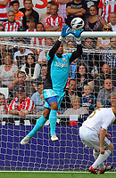 Saturday, 01 September 2012<br /> Pictured: Michel Vorm<br /> Re: Barclays Premier League, Swansea City FC v Sunderland at the Liberty Stadium, south Wales.