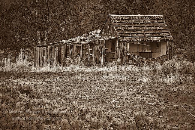 """""""Adin Relic""""  - Old barn near Adin, Northeastern California."""