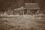 """Adin Relic""  - Old barn near Adin, Northeastern California."