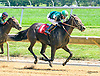 La India Anacaona winning at Delaware Park on 7/19/17