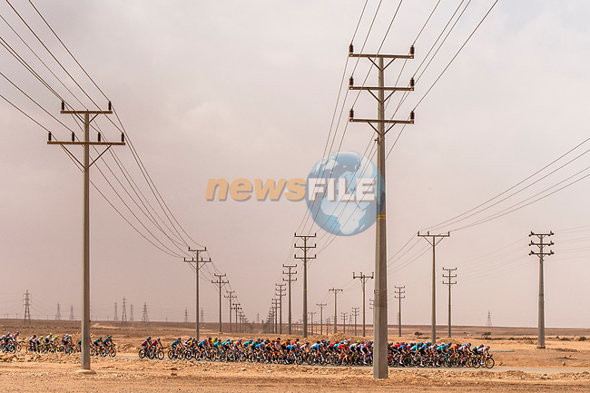 The peloton in action during Stage 2 of the Saudi Tour 2020 running 187km from Sadus Castle to Al Bujairi, Saudi Arabia. 5th February 2020. <br /> Picture: ASO/Kåre Dehlie Thorstad | Cyclefile<br /> All photos usage must carry mandatory copyright credit (© Cyclefile | ASO/Kåre Dehlie Thorstad)