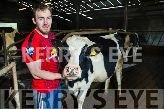 Jason Hickson at home in Aunascaul with his cow called Charlie on Monday.