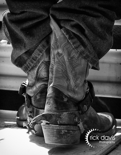 The boots of a bull riding cowboy sport a critical piece of equipment to assist the cowboy with his endeavor, spurs. The shank of the spurs are angled inward to assist with maintaining a leg hold on the bull, while the blunted rotating five star spur rowels prevent any damage to the thick hide of the bull.