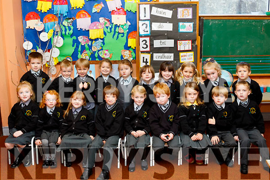 School days<br /> ----------------<br /> Junior infants from Castleisland Gaelscoil Aogain pictured at their first day at school last Wednesday were Aoibheann, Ava&amp;Jade N&iacute; Chonch&uacute;ir, Aoibhinn N&iacute; Bhrosnach&aacute;in, Jessica N&iacute; hArg&aacute;in,L&iacute;le N&iacute; Shuilleabhain, Leag Nic Charthaigh, Mia Nic Gabhann, Jemma N&iacute; Bhraoin, Zoe de Burca, Aaron &Oacute; h&Aacute;rg&aacute;in, Eoin &Oacute; Briain, Noah Rzasa, Thomas &Oacute;Donoch&uacute;, Ryan &Oacute; Conch&uacute;ir, R&iacute;an Rahilly, Joshua Mac Gearailt, Rion &Oacute; Suilleabh&aacute;in ages Jayden &Oacute; Conch&uacute;ir.