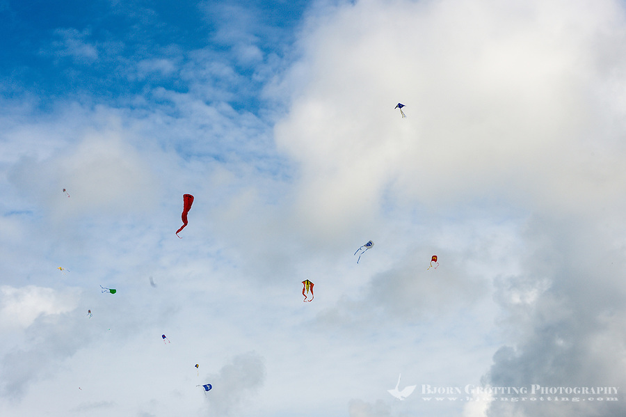 Norway, Sola. Kiteflying at Hellestø beach.