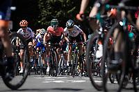 peloton up the infamous Mur de Huy.<br /> <br /> 22nd la Flèche Wallonne Féminin 2019 (1.WWT)<br /> 1 Day Race: Huy – Huy 118,5km<br /> women's elite race<br /> <br /> ©kramon